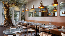 Bandol: Olive-Tree takes centre stage