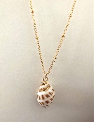 Seashell Pendant Chain Necklace