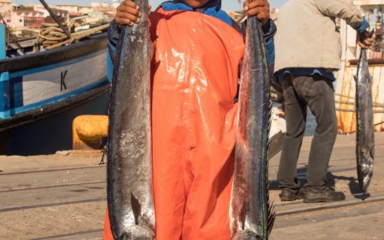 Young fisherman 2