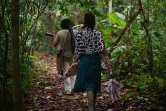 Excursión en la selva