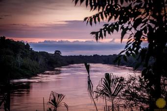 Amazonía Rio Tambopata
