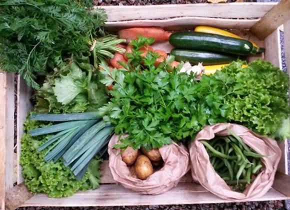 Panier de légumes/mandje met groenten