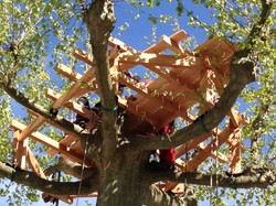 Création de cabane perchée