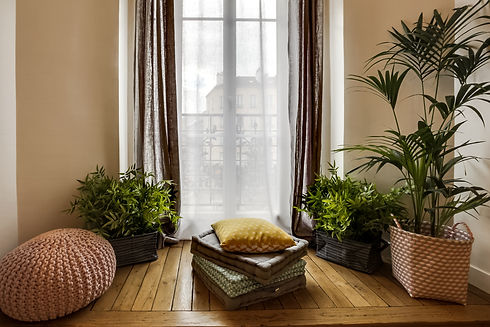 jungle-interieure-appartement-paris-arch