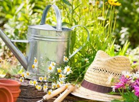 Comment préparer son jardin pour la belle saison?