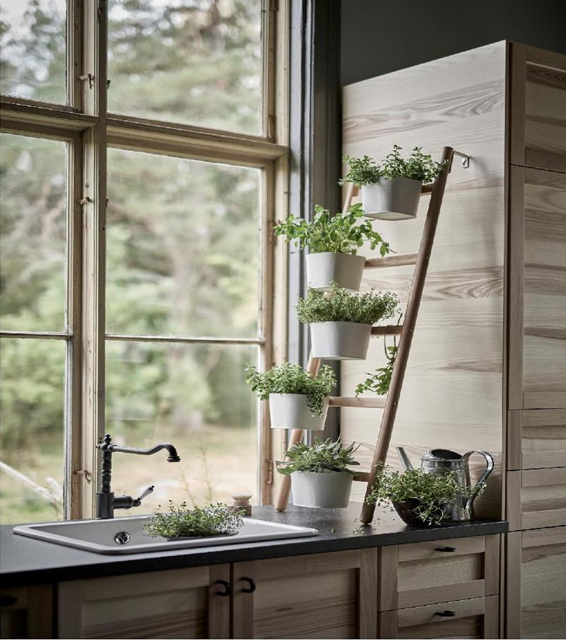 porte plantes dans une cuisine esprit jardin d'hiver barry & associés, architectes d'intérieur
