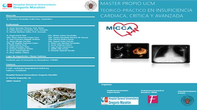 MICCA.png