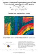 8 novembre e 13 dicembre 2019 - Seminario di Supervisione Clinica condotto attraverso l'analisi feno