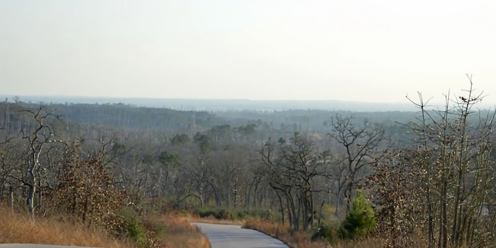 Destination Adventure Long Run: Bastrop