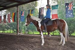 Equestrian Academy