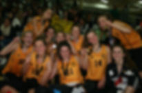 Wellington Girls', Sport