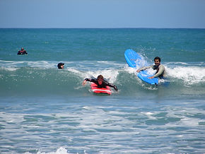 Surfen in Wellington