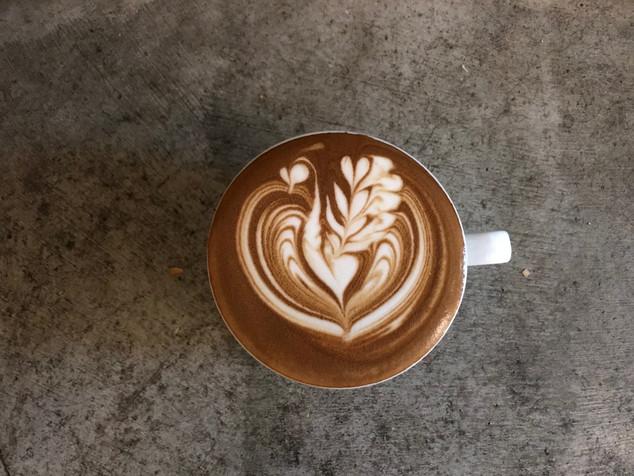 Cafe Latte (Swan)