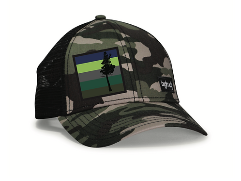Desolation Classic bigtruck® Hat in Camo