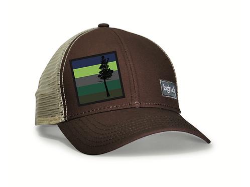 Desolation Classic bigtruck® Hat in Brown
