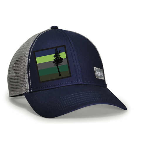 Desolation Classic bigtruck® Hat in Navy