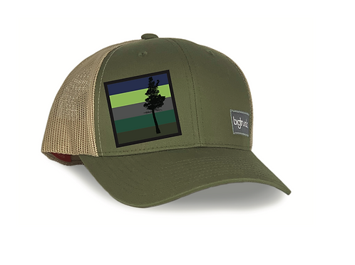 Desolation Classic bigtruck® Hat in Olive