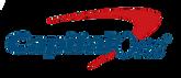PNGPIX-COM-Capital-One-Logo-PNG-Transpar