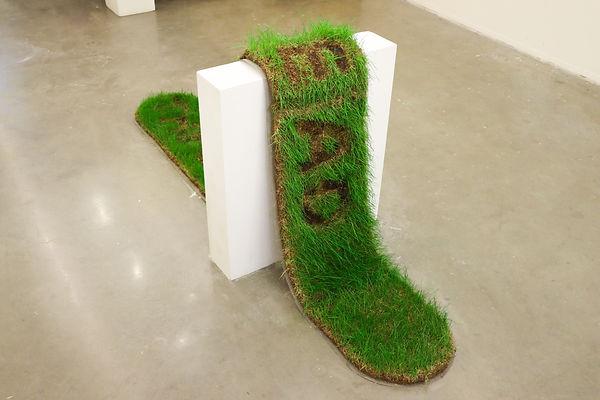 the dog is dead kentucky bluegrass bubrn brand branded mesh sod art sculpture