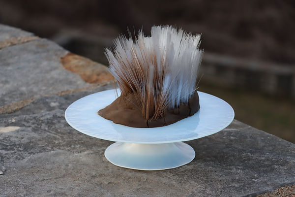 cakestand radioactive clay art connor dolan coldwater creek st. saint louis missouri river spines blood health cancer
