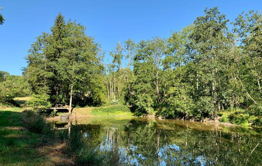 Environnement lac