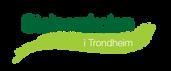 Steinerskolen i Trondheim