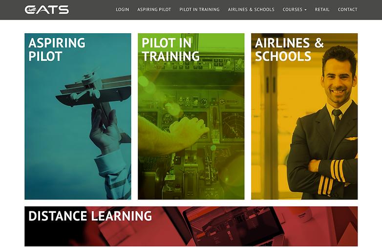 Pilot Online Training