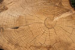 Hand-PickedFine Timber