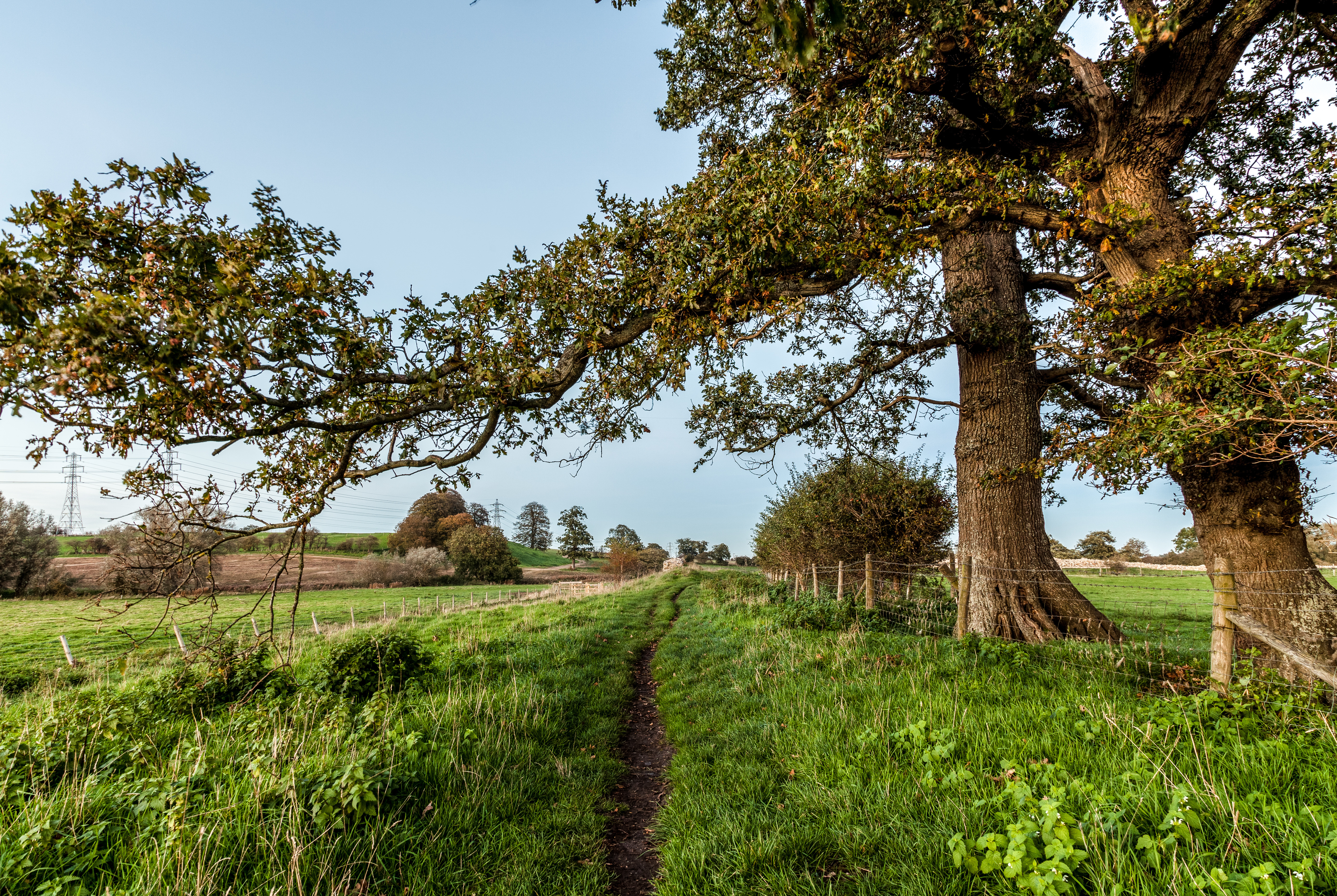 Norfolk Countryside Location