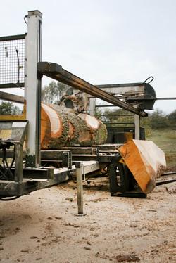 Sustainable Woodland Timber Yard