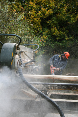 Norfolk Woodlands Sustainable Timber