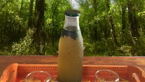 RECETTE DU MOI : LA TISANE FROIDE, boisson rafraîchissante et reminéralisante pour l'été !