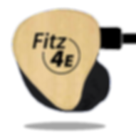 fitz 4E.png
