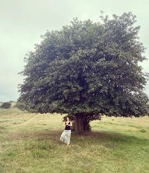Trädet vid trädet Brösarps backar_edited