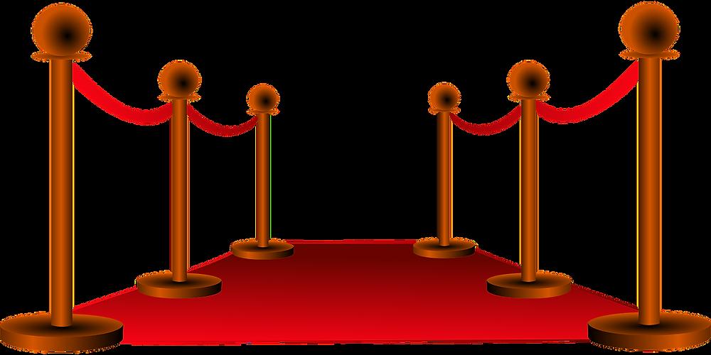 Quels sont les types de services que propose un maître de cérémonie en Haute-Garonne ou en Occitanie ?