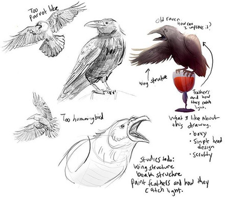 Oh look. I'm revisiting raven studies ag