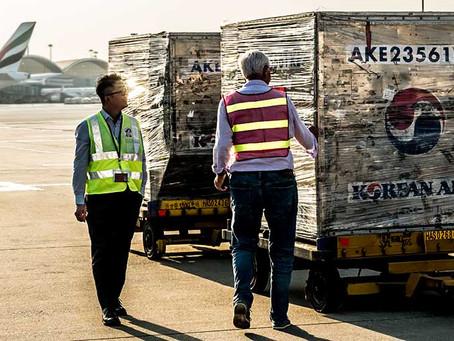 Cargo Handling Staff in Focus