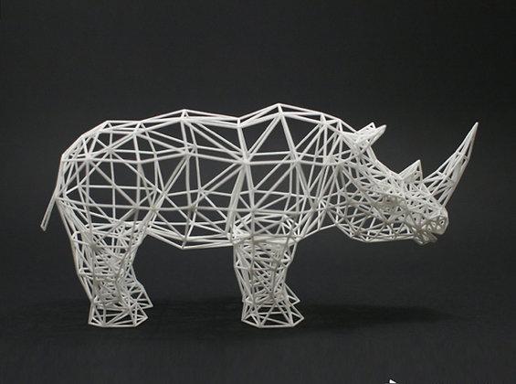 rhinoceros safari