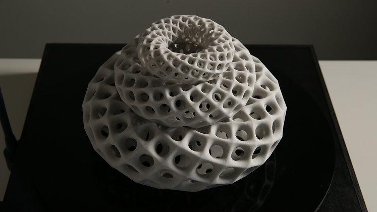 Bloom MultiTorus | sculpture
