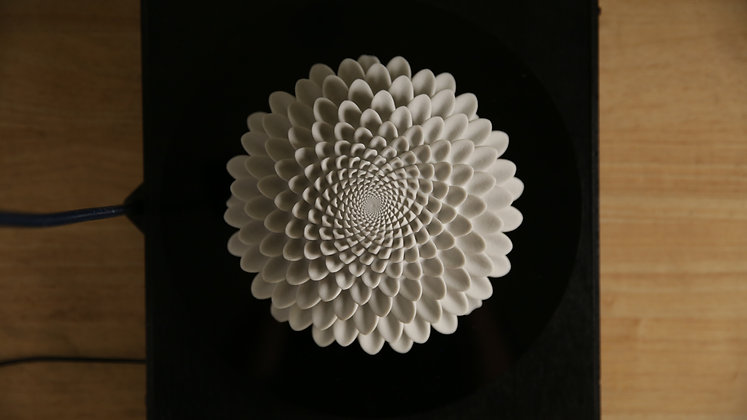 Bloom Hemisphere | sculpture
