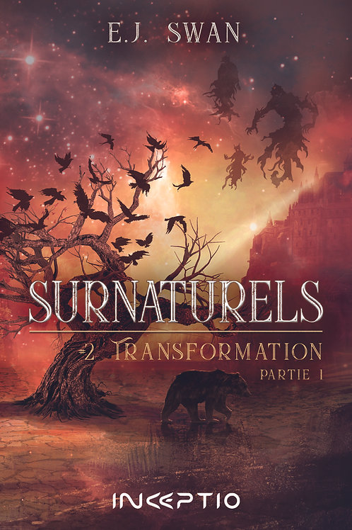 Surnaturels #2 Partie1 Occas