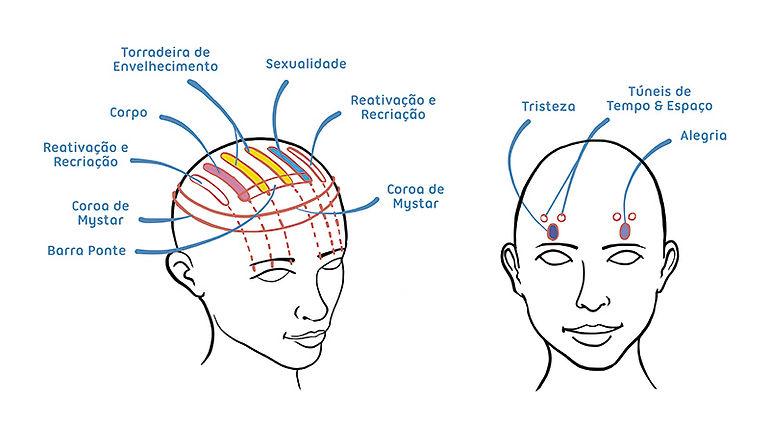HEAD-MAP-2.jpg