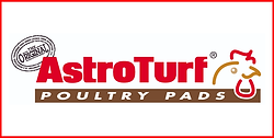 11- Astroturf.png