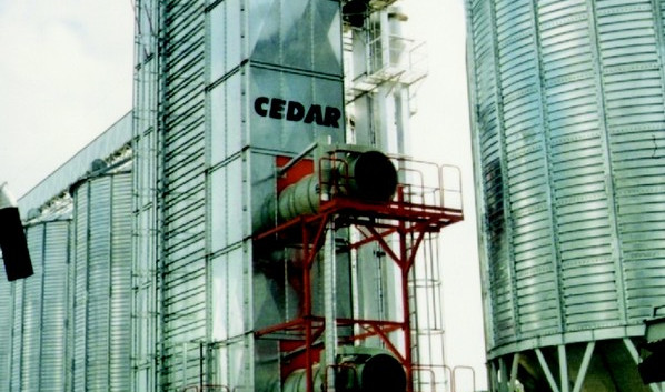 Cedar-.jpg