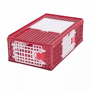 Gabbia-trasporto-polli-mod-B.webp