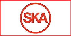 18 - Ska.png