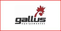 14 - Gallus.png