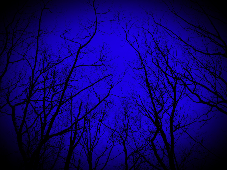DSCN0674_edited_edited.jpg