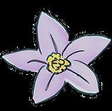 webflower violet.png