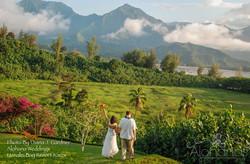 kauai destination wedding garden